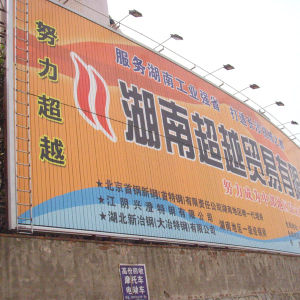 Wall-Mounted Energy Conservation Lighting Trivision Billboard for The Commerce Area (F3V-131) pictures & photos