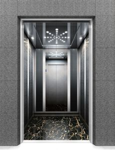 Passenger Lift Home Elevator with Stainless Steel Meshing pictures & photos