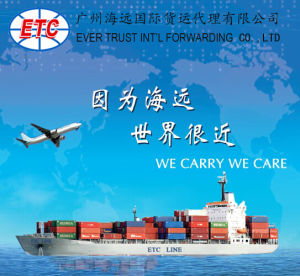 New Sea Freight Shipping Service From China to Thailand
