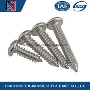 Steel Fastener Cross Recessed Pan Head Self Tapping Screw pictures & photos