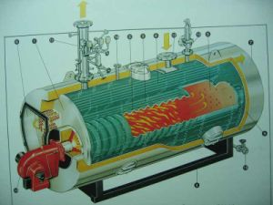 Gas and Oil Fire Tube Steam Boilers (0.5-40T/H) with 70 Years Experience