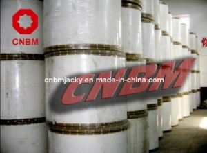 Reinfoced Polyester Mat for Waterproofing Membrane pictures & photos