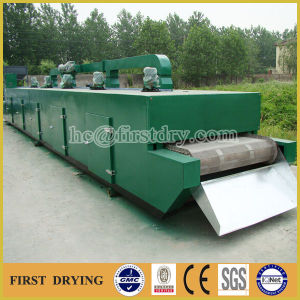 Dw Series Mesh Belt Drying Equipment