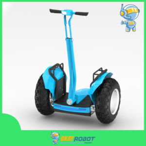 Self Balance Scooter, Electric Scooter Chariot with Brushless Motor
