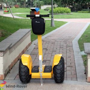 Best Price Self-Balancing Electric Chariot pictures & photos