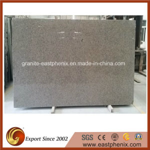 Competitive Price Granite Big Slab
