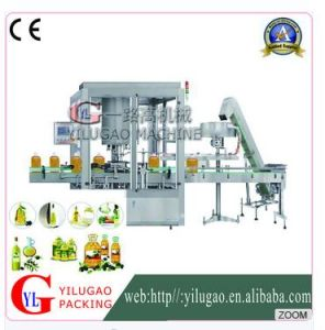 Ylg-Gz100by Automatic Rotary Capping Machine pictures & photos