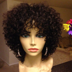 Afro Kinky Curly Full Lace Wig/Lace Front Wig pictures & photos