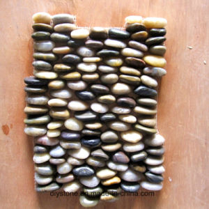 High Quality Mixed Standing Paving Pebble Tile pictures & photos