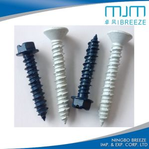 Plastic Powdered Roofing Screw Self Drilling Screw pictures & photos