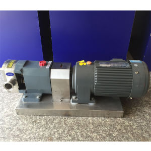 Zb3a-6 0.75kw 316ss Sanitary Stainless Steel Food Grade Lobe Pumps pictures & photos