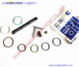 China Injector Seal, Injector Seal Manufacturers, Suppliers, Price