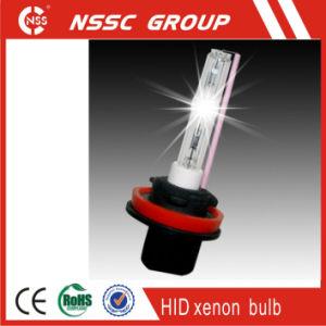 Xenon HID Kit 12V 24V 6000k 35W 55W D1s D1r D2s D2r D3s D3r D4s on