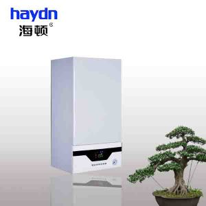Home Use Wall Hung Gas Boiler