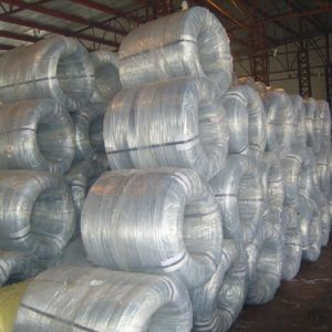 Electro Galvanized Binding Wire pictures & photos