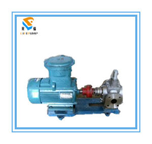 Ycb0.6/0.6 Stainless Steel Marine Gear Oil Pump