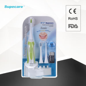 Electronic Vibration Adult Toothbrush with Battery Wy839-F