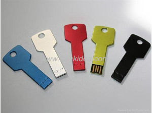 Best Popular Steel Colorful Keyusb Flash Drive/USB Disk/USB Pen Drive 1GB-64GB with OEM Logo