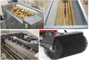 Vegetable Fruit Brush Cleaning Machine/Fruit Brush for Waxing pictures & photos