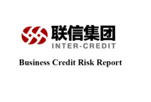 China Commercial Business Credit Risk Report