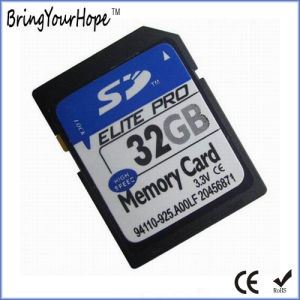 Real Full Capacity High Speed 32GB SDHC Memory Card (32GB SD) pictures & photos