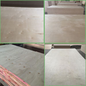 4X8 Cheap Price White Birch Plywood For Furniture