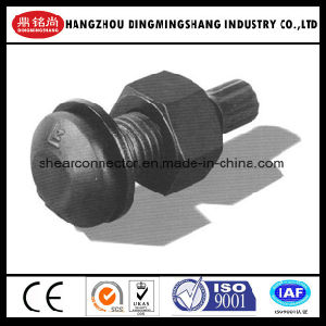 High Tensile Structural Bolt A325/A490 Tc Bolt pictures & photos