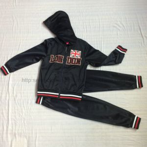 UK Fleece Sport Suit Clothes in Kids Clothing Sq-6225