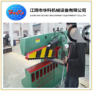 (Q43-3150) Hydraulic Metal Shear pictures & photos