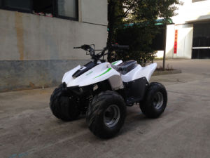 49cc Mini Quad ATV pictures & photos