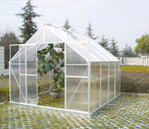 Growell Walk -in 4mm Polycarbonate Greenhouses SW8 pictures & photos