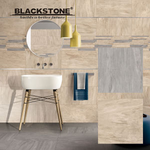 600X600mm New Arrival Porcelain Rustic Floor Tiles for Bathroom (663801NAC3) pictures & photos