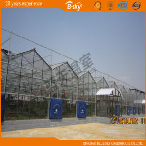 Long Life-Span Glass Greenhouse with Beautiful Appearance pictures & photos