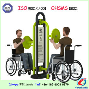 Park Disabled Fitness Gym Outdoor Amusement Equipment pictures & photos