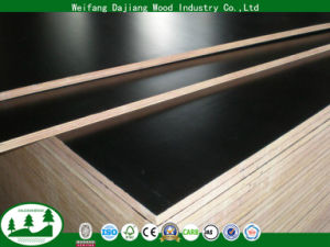 China 13mm High Quality Film Faced Plywood For Construction China