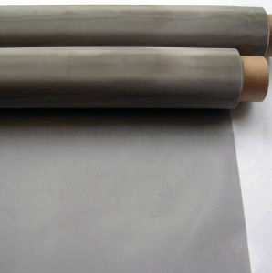 Stainless Steel Wire Mesh for Filter Mainly pictures & photos