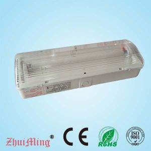 8W Fluorescent Best Quality Rechargeable Emergency Light (EF108BN)