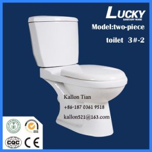 Sanitary Ware Two-Piece Ewc Washdown/Gravity Flushing P-Trap 220mm pictures & photos