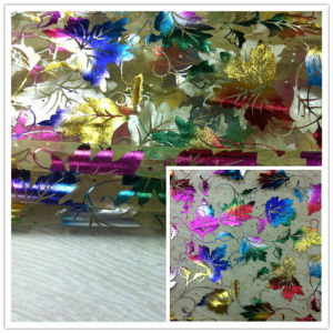 Organza Fabric with Colorful Print pictures & photos