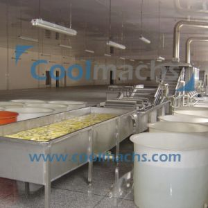 Pumpkin IQF Freezing Production Line pictures & photos