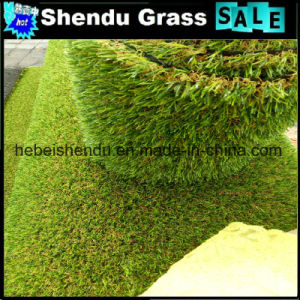 Green+Brown Curl 30mm Artificial Turf From China pictures & photos
