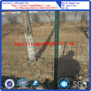 PVC Euro Fence/Cheaper Fence/Field Fence pictures & photos