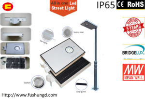 8W Integrated Solar LED Street Light with Garden