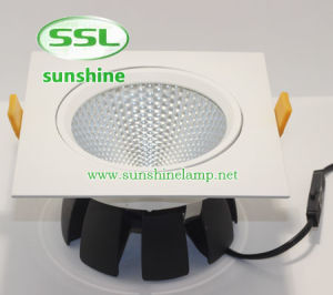 High Quality 20W LED COB Down Light for Hotel