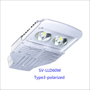 60W IP66 LED Outdoor Street Lamp with 5-Year-Warranty (Polarized)