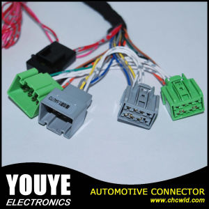 Electronic Equipment Male and Female Wire Harness Assemblies Electrical Cable pictures & photos