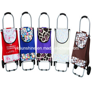 Folding Trolley Shopping Bag (XY-408A) pictures & photos