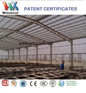 Winsroof® PC Corrugated Roof Tile-Polycarbonate Roof Tile-Teja Policarbonato pictures & photos