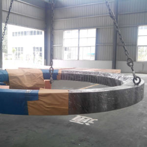 Large Diameter Slewing Bearing for Port Crane 3-945g2 pictures & photos