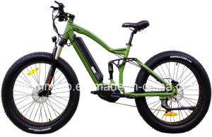 500W Big Power Fat Tire MID Drive Mountain Electric Bicycle